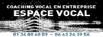 Coaching vocal entreprise